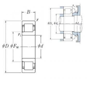 25 mm x 80 mm x 21 mm  NSK NJ 405 cylindrical roller bearings