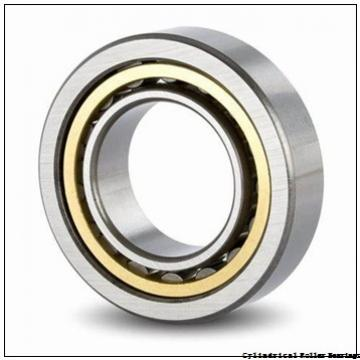 25 mm x 80 mm x 21 mm  NSK NJ 405 cylindrical roller bearings