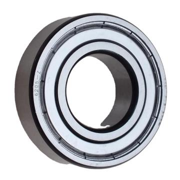 6000 6001 6201 6202 6301 6302 Zz 2RS Deep Groove Ball Bearing