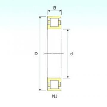 25 mm x 52 mm x 15 mm  ISB N 205 cylindrical roller bearings