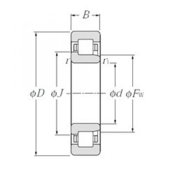 160 mm x 290 mm x 48 mm  CYSD NJ232 cylindrical roller bearings
