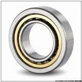 45 mm x 75 mm x 40 mm  IKO NAS 5009ZZNR cylindrical roller bearings